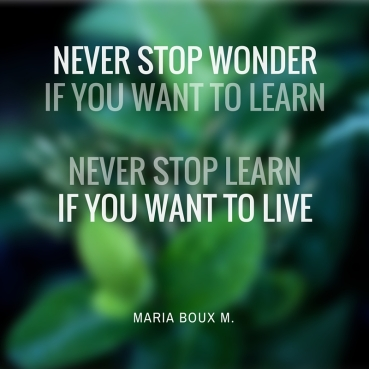 never stop wonderif you want to learnnever